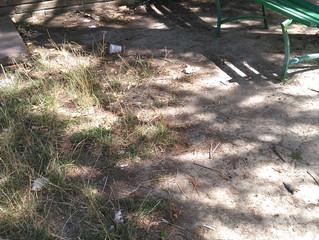 """""""Parco della Resistenza"""": degrado e abbandono"""