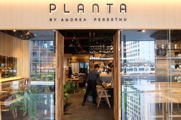 Planta, Tempat Lidah Berpelesir Rasa Mediterania & Indonesia