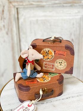 Cowboy in Suitcase
