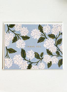 Thank You - Hydrangeas
