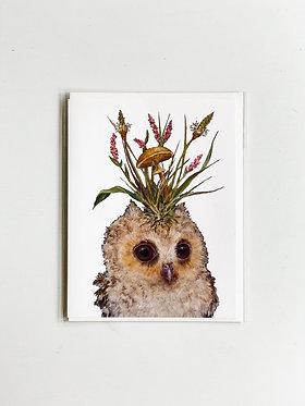 Louisa May Baby Owl