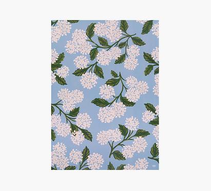 Gift Wrap - Hydrangea