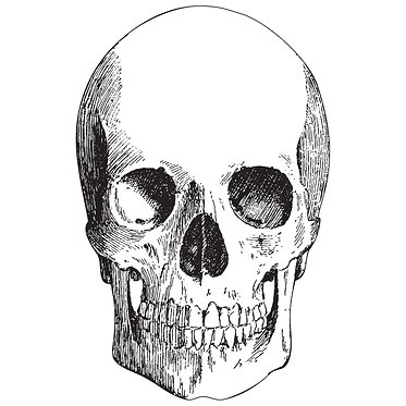 Placemat - Skull