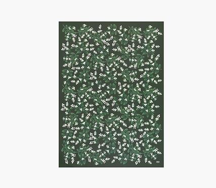Gift Wrap - Evergreen Mistletoe