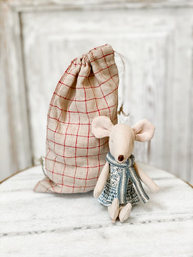 Winter Mouse in Bag