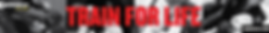 Gameness Web Banner - 728 x 90 4.12.19.p