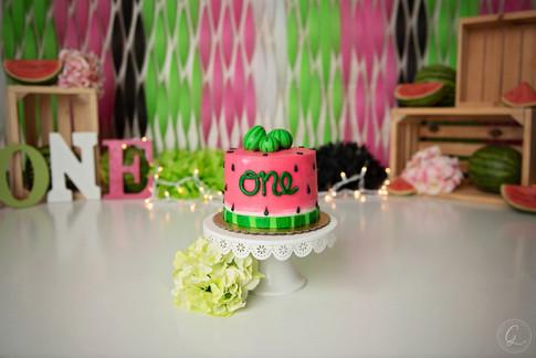 South Florida Cake Smash Photographer-27