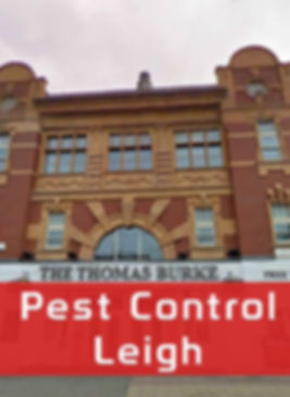 Pest Control in Leigh