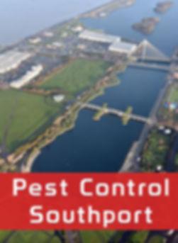Pest Control Southport