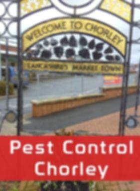 Pest Control Chorley