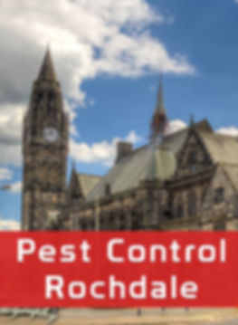 Rochdale Pest Control