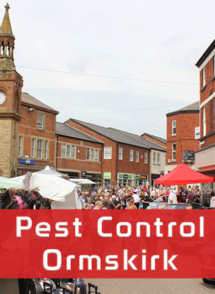 Ormskirk Pest Control