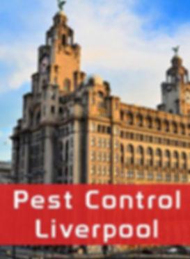 Pest Control Liverpool