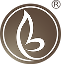 Bravour®_Bruin_Beeldmerk_-HQ-transparant