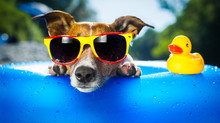 Keep an Eye Out for Heat Illness This Summer