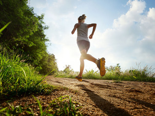 Increase Training Gradually to Stay on the Cross Country Running Path