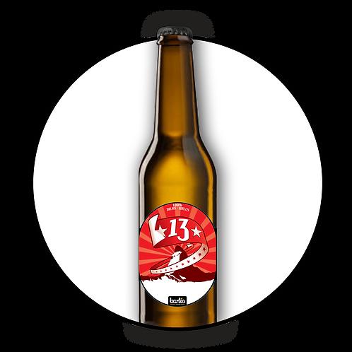 Carton de bières 13 (x6)