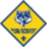 cubscouts.jpg