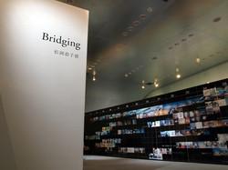 bridging_full_03