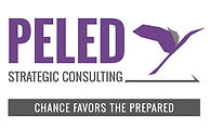 peled strategic consulting