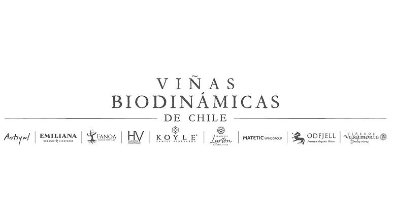 logo_viñas_cuad.png
