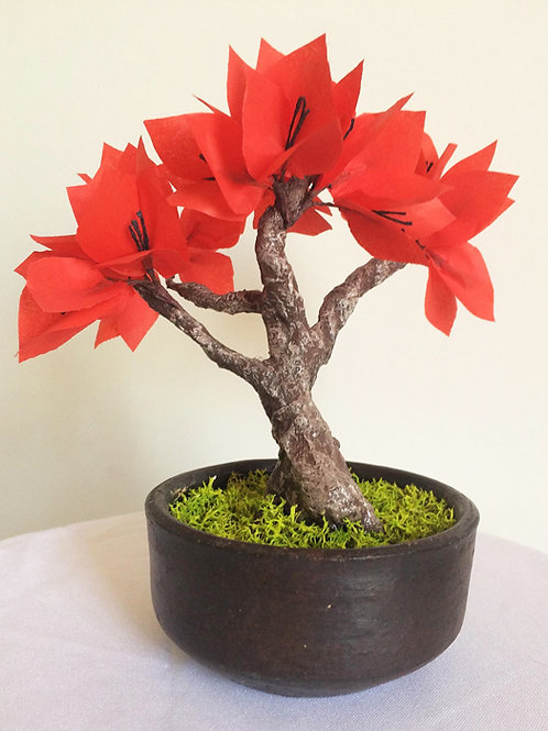 Bonsai de papel Bouganvillea roja