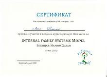 IFS Certificat .jpeg