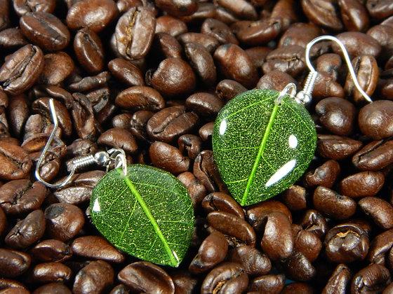 Green Glass Leaf