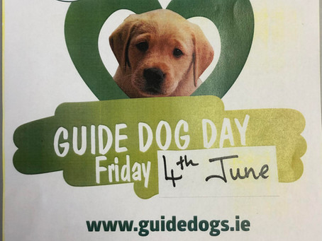 No Uniform Day in aid of the Irish Guide Dogs.