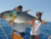 Nice yellowfin.png