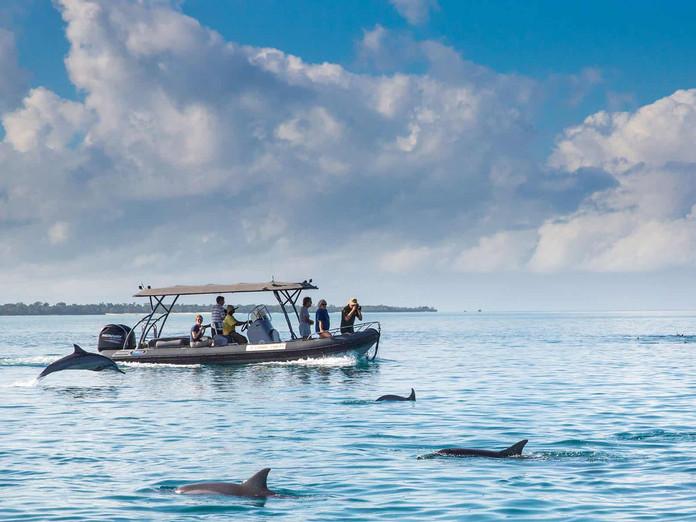 pemba island yacht charters zanzibar