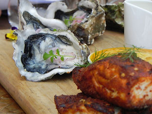 Delious Oysters and fish platter expeience