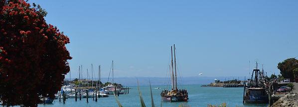 Beautiful Napier harbour as seen on a classic car tour