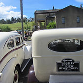 Winery tour in an open top vintage car