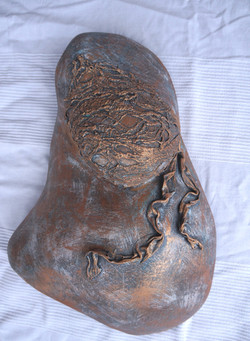 Bronze Belly