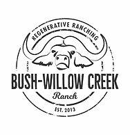 BUSH WILLOW CREEK - RANCH CURVES.jpg
