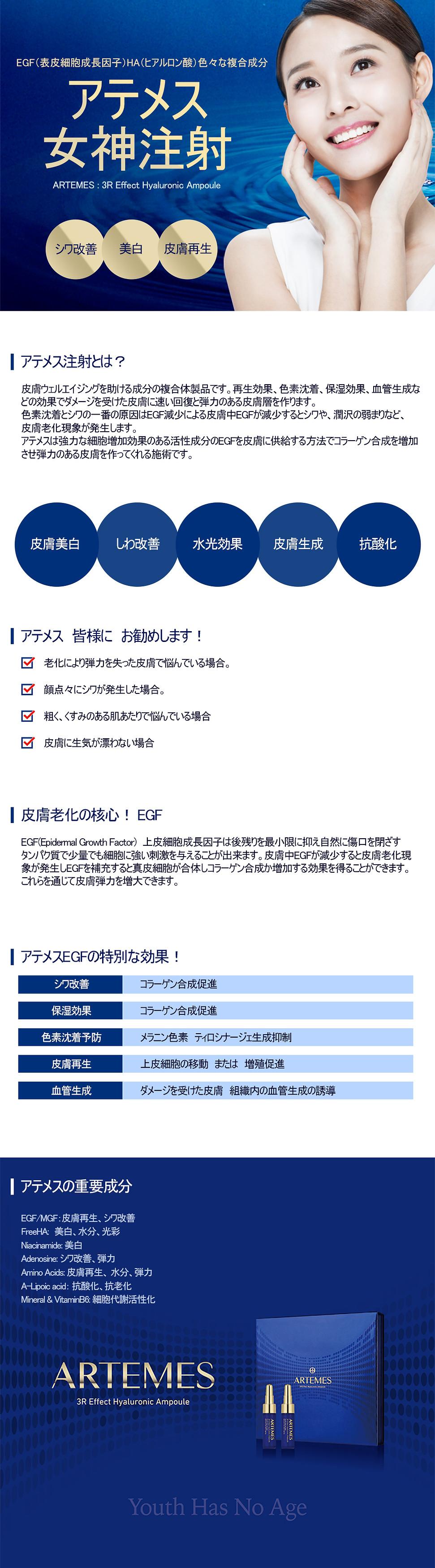 아테메스-여신주사_일본어.jpg