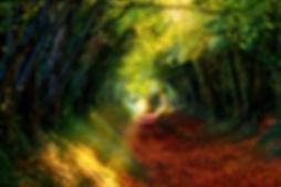 AdobeStock_307209301_edited.jpg