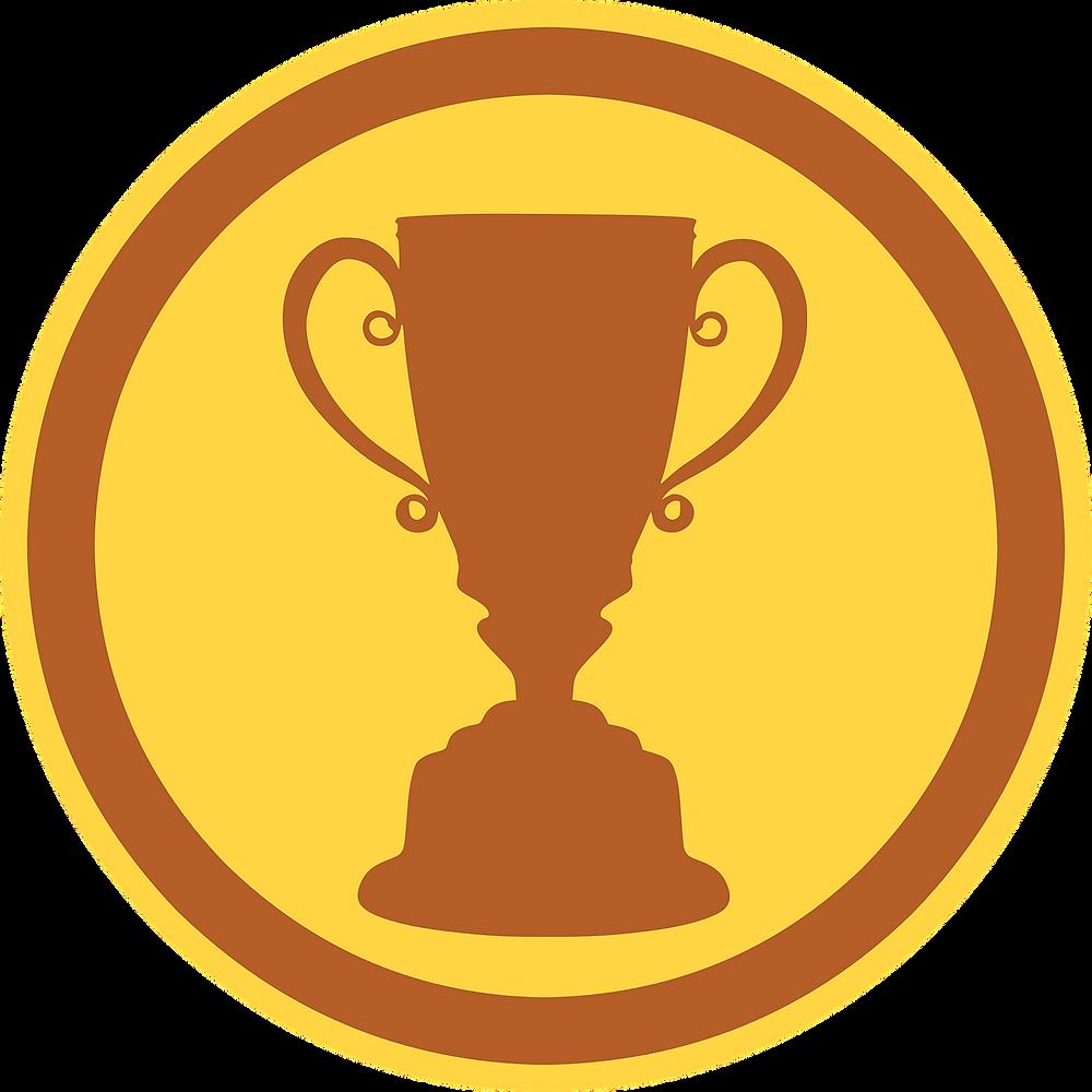 town-seeks-nominations-for-webster-cares-award