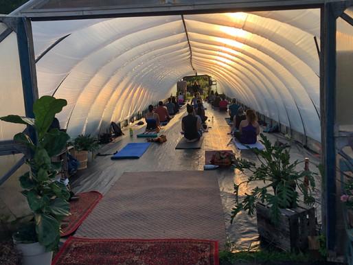 Local garden center brings yoga back to nature