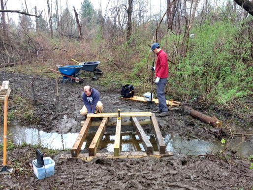 Friends of Webster Trails hold first workday of 2021