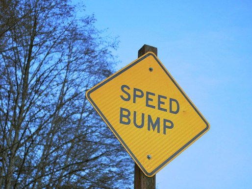 Watch for Speed Bumps!
