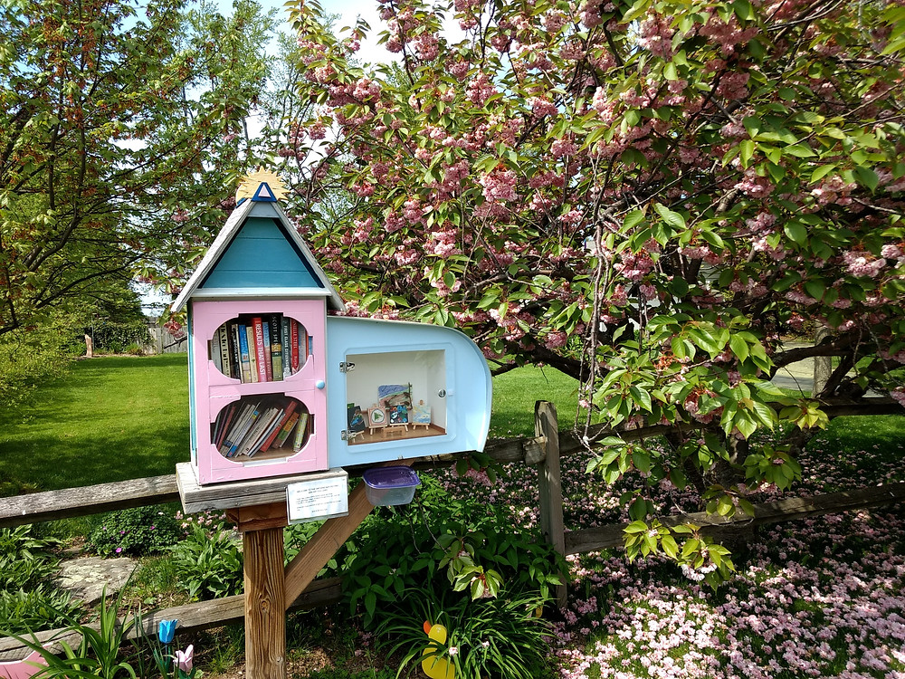 webster-on-the-web-free-little-library-1
