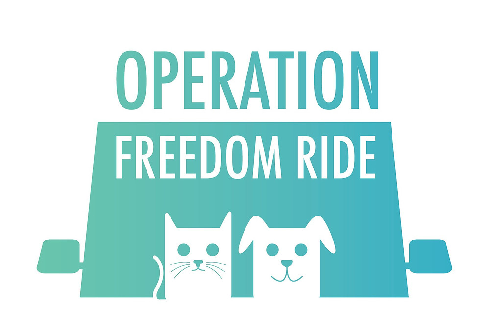 collecting-pet-items-for-operation-freedom-ride