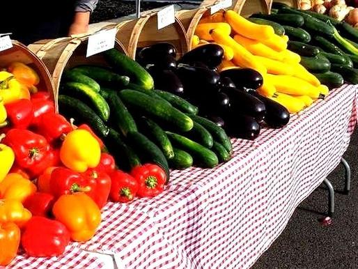 Webster's Joe Obbie Farmers' Market is back!