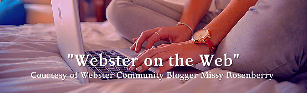 webster on the web logo.png