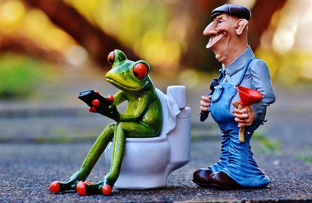 flush-responsibly