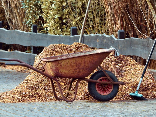 Residents can still pick up leaf mulch at Webster Town Hall
