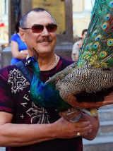 Yuri with peacock.