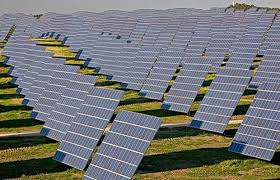 REIL Floats Tender for 6,500 Polycrystalline Solar Modules